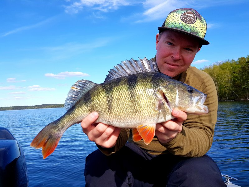 Sami_Saarinen_2019_Perch_47_1360_01