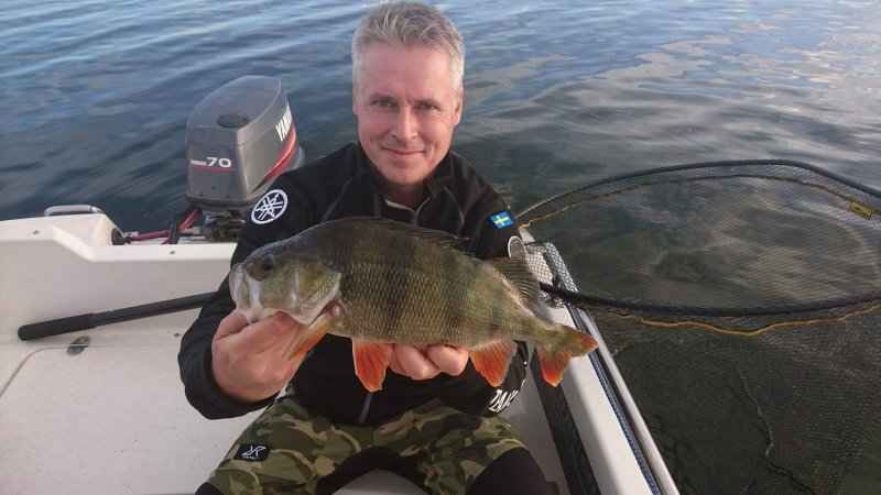 Patric_Lindblom_2017_Perch_42_1150