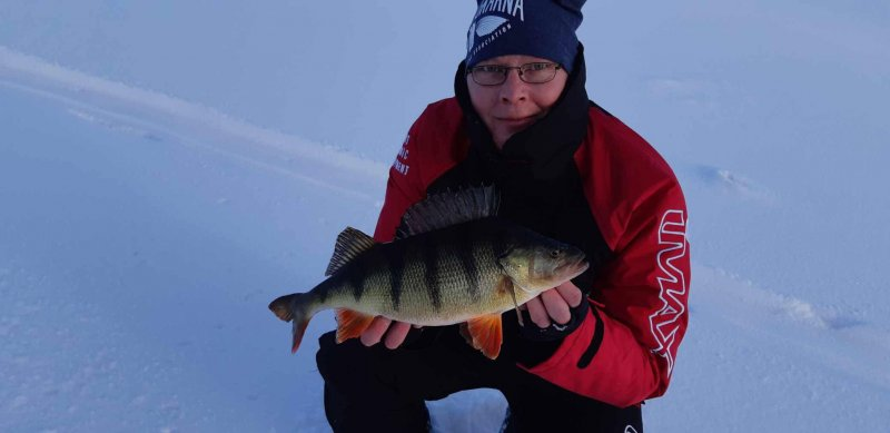 Mikael_Haraldsson_2019_Perch_45_1130_01