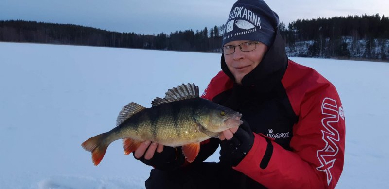 Mikael_Haraldsson_2019_Perch_46_1280_01
