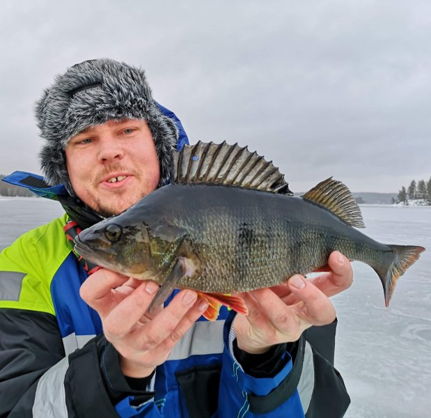 Pontus_Hägglund_2019_Perch_41_990_01