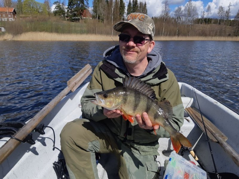 Daniel_Persson_2020_Perch_45_1000_01